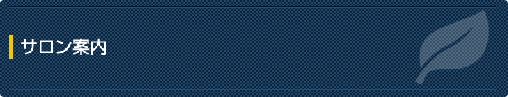 大阪府大阪市旭区千林のスーパースカルプ旭千林店Aozoraの発毛サロンの案内
